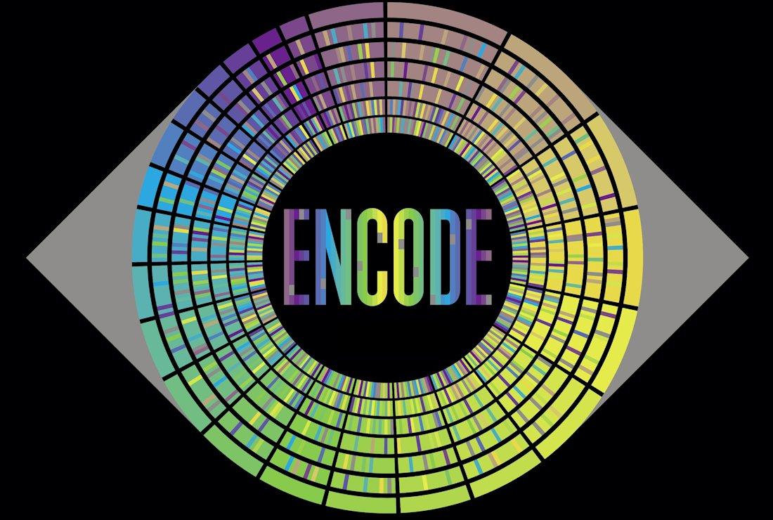 ENCODE – Enciclopedia de los elementos del ADN   Afán por